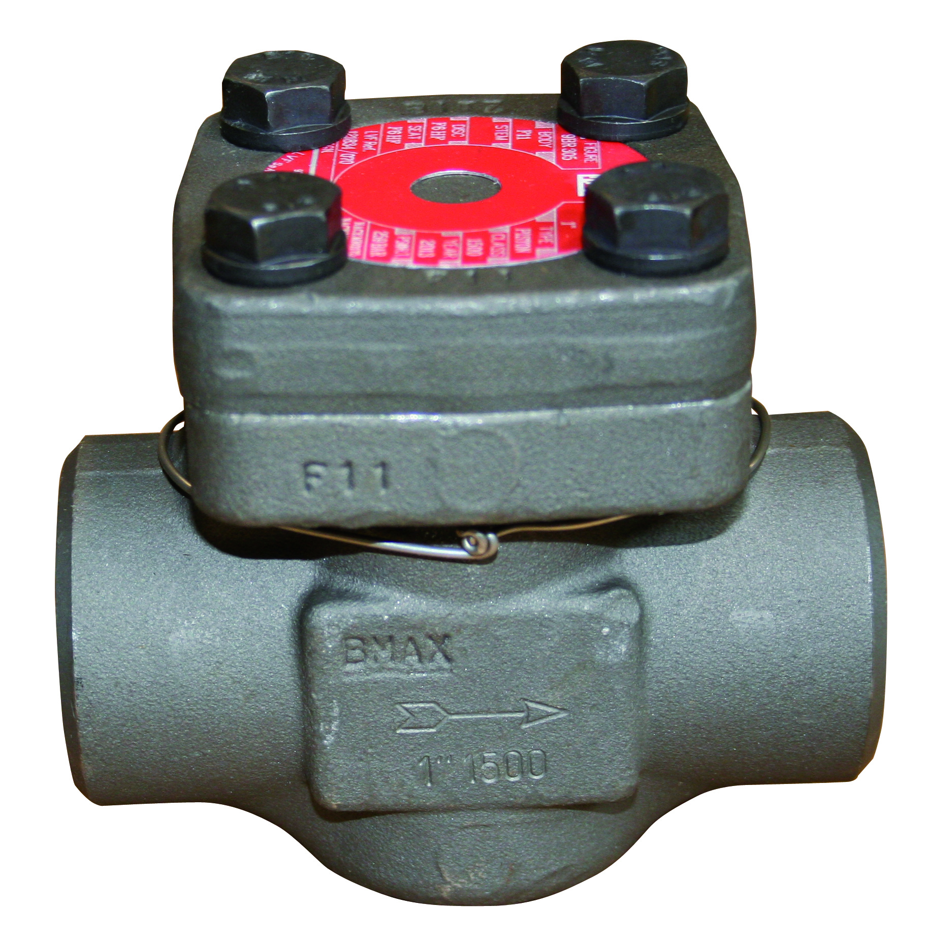 FORGED CHECK VALVE 2